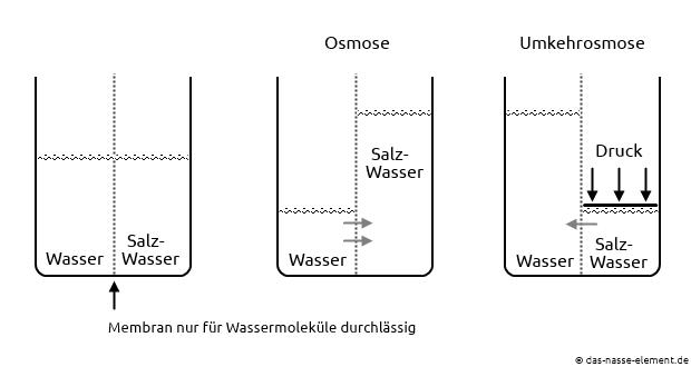 Osmose und Umkehrosmose.